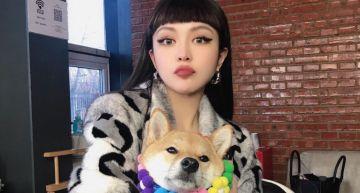 羅志祥低潮10個月宣告「本週六」發片!網瘋傳「復合周揚青」線索