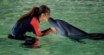 吳宣儀、金子涵「親吻海豚」被罵爆 網怒譙:又蠢又惡