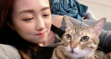 超級暖心!ㄚ頭領養「癱瘓貓」花數萬治療  她淚崩:終於能站起來了!