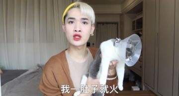 鍾明軒遭酸「養貓還指定品種貓」!爆氣回嗆:養貓還要政治正確?