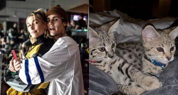 小賈斯汀砸「108萬買特種貓」不到半年就走丟!被發現模樣曝光:又冷又瘦