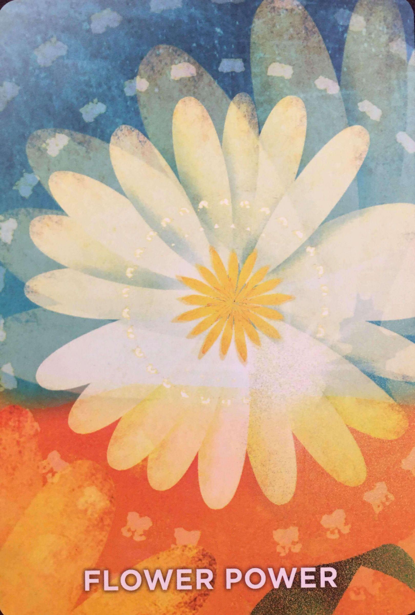 每週占卜/靜心選一張牌 測我的指導靈「想提醒我什麼事」?
