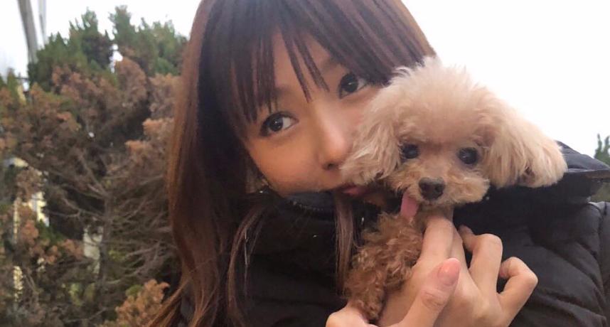 工作最重要!深田恭子熱戀地產大亨 簽婚前契約1年後吐心聲:不嫁了