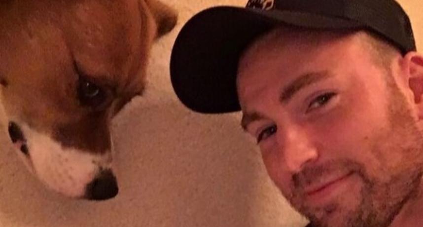 甜炸!美國隊長為愛犬獻出「第一次」 粉暴動:下輩子投胎做他狗
