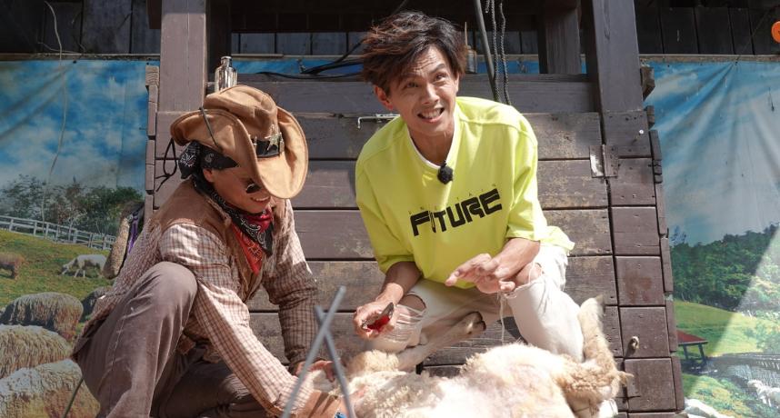《綜藝新時代》阿翔慘遭綿羊「狠踹蛋蛋」!浩子「及時護蛋」逃過一劫