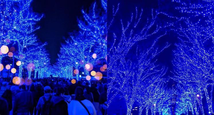 日本聖誕必去!東京澀谷人氣聖誕打卡點「青之洞窟」浪漫指數破表的藍色燈海!