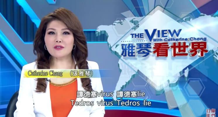 烙全英文嗆爛譚德塞!張雅琴氣炸「台灣不是塑膠做的」 網嗨:比台語罵人還練等!
