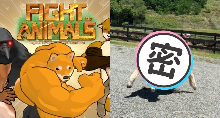 《動物之鬪》爆肌柴犬新夥伴?網逛動物園驚見「超壯走路綿羊」:拳拳到肉!