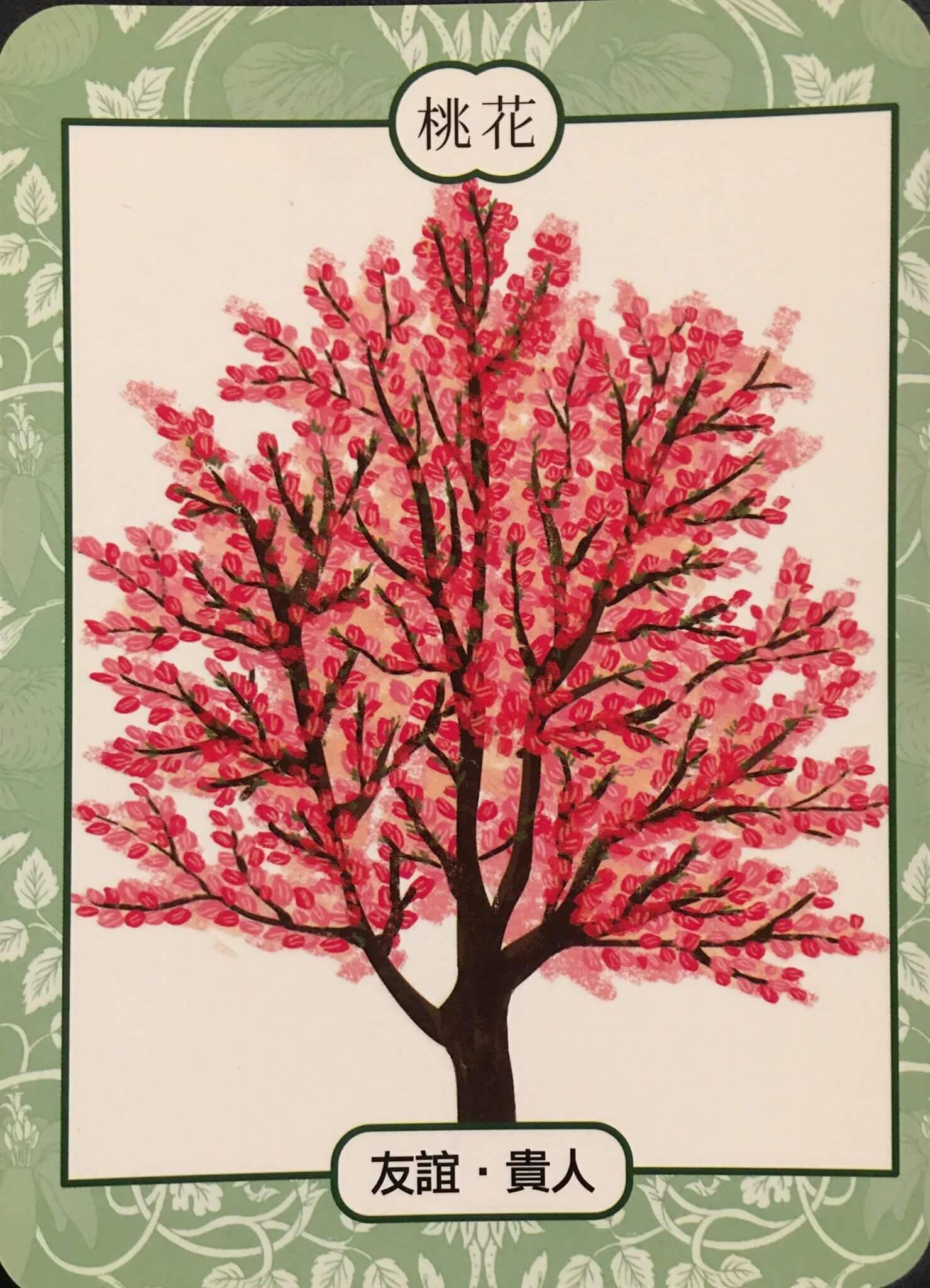 每週占卜 / 直覺選一棵樹 測如何「面對未知的恐懼與壓力」?
